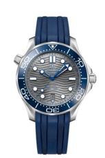 Omega Seamaster Diver 300M Omega Co-Axial Master Chronometer Grey Dial Stainless Steel Mens Watch 21032422006001
