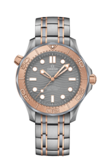 Omega Seamaster Diver 300M Omega Co‑Axial Master Chronometer 25th Anniversary Limited Edition Mens Wristwatch 21060422099001