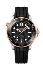 Omega Seamaster Diver 300M Omega Co-Axial Master Chronometer Black Dial Two Tone Mens Watch 21022422001002